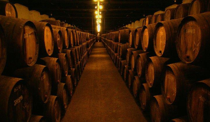 Visita as Caves de Vinho do Porto