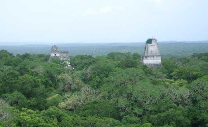 vista aerea dos templos I, II e II de Tikal